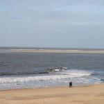 Blick auf die Seehund-Sandbank / Bild: JBM|News
