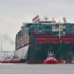Bild: Hamburg Hafen, Hasenpusch