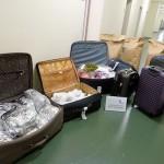 Khat im Koffer / Bild: ZFA-BB